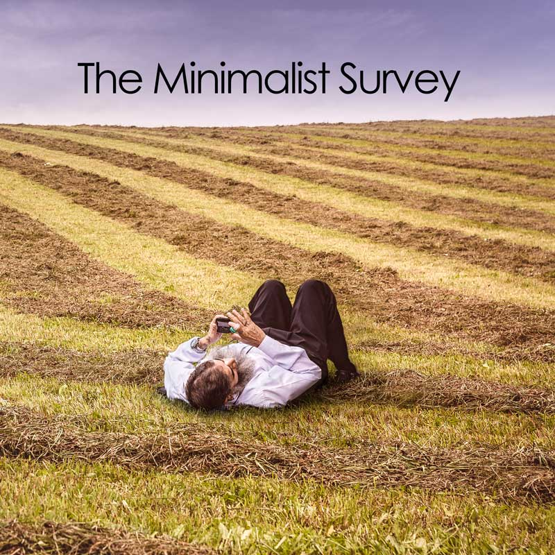 Minimalist Tips – The Minimalist Survey Part 2